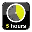 Glossy Button schwarz - 5 hours
