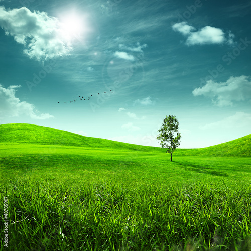 Sticker Beauty meadow. Abstract summer landscape for your design
