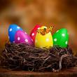 bunte Ostereier mit Schmetterling im Nest