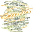 Word cloud for Neurotheology
