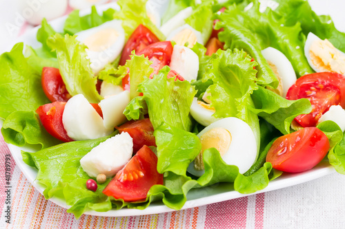 salad with tomatoes, mozzarella and eggs