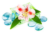 Clarity spa concept with flower poster