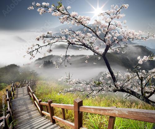 japonski-krajobraz-z-gora