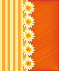 Greeting card with daisies and abstracts background.
