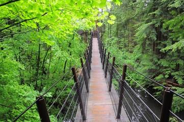 Suspension bridge. Vancouver. Canada.