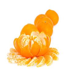Flower of mandarin