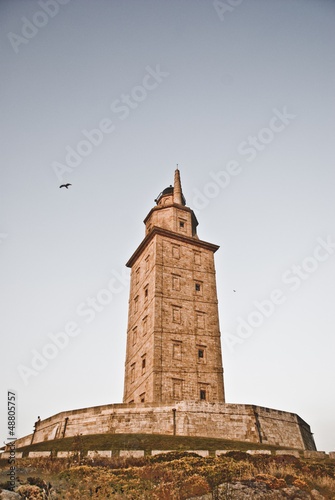 Tower of hercules five