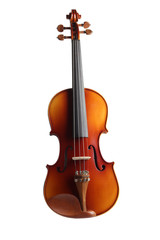 Violine frontal vollständig freigestellt