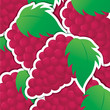 Red grape sticker background/card in vector format.