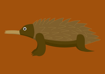 Australian echidna on brown background.