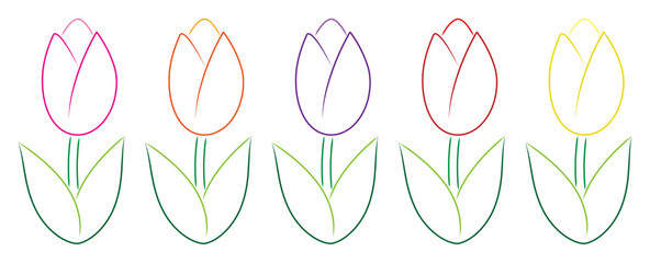 Hand drawn tulips in vector format.