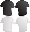 vector illustration of black and white male shirts template