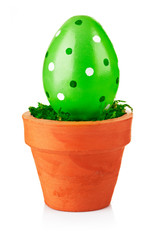green easter egg in the pot isolated on white background
