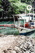 Coron island tropical recreations