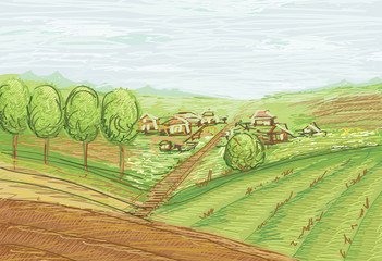landscape with fields and village vector