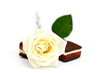 White rose with chocolate cookies