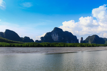 Mangrove swamp and mountains on river