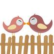 Liebende Vögel auf Zaun