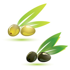green and black olives, isolated vector illustration
