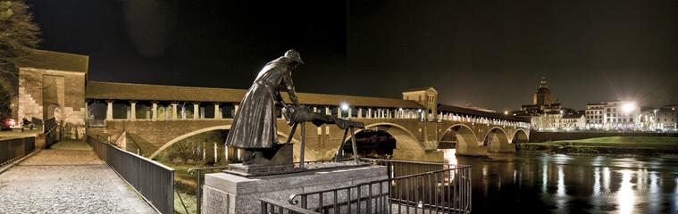 Pavia panorama