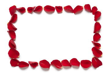 Red rose petal rectangle border