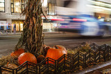Pumpkins and bus