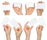 Hands hold business cards collage on white background .