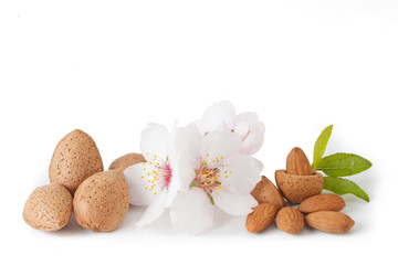Almonds isolated on white background_II