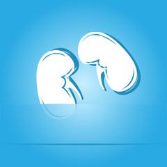 Kidneys. Paper sticker. Vector illustration.