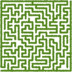 Bushes maze