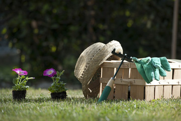 Still life of gardening objects
