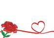 Sfondo rosa rossa