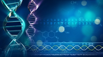 Looping DNA background