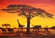 Fototapeten,giraffe,elefant,akazie,gnu