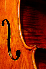 Cello's body closeup