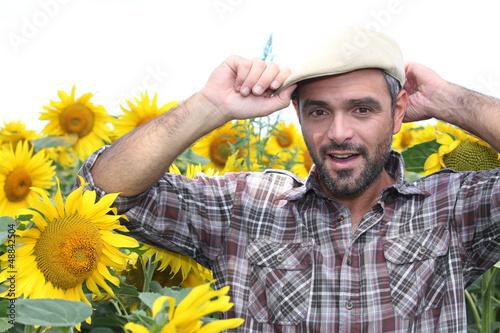 a farmer in a sunflowers field