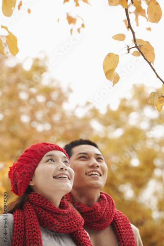 Chinese couple looking at autumn leaves