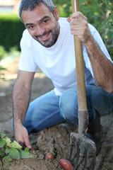 Man digging up vegetables in his garden
