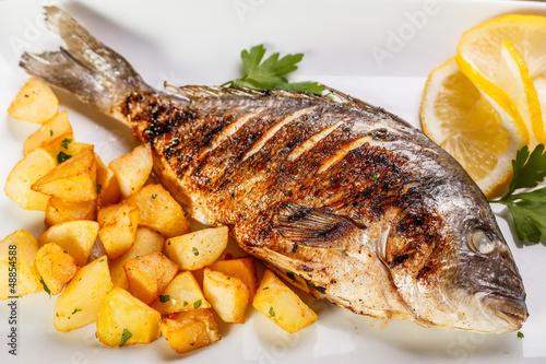 Sea bream fish - 48854588