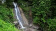 waterfall scenery in the middle of forest. Carpathian, Ukraine