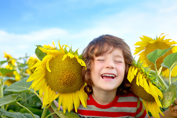 happy sweet little boy in field of sunflowers