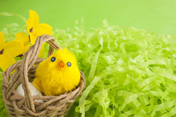 Yellow fluffy Easter chicken in a basket