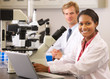 Male And Female Scientists Using Microscopes In Laboratory