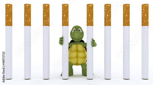 tortoise escaping cigarette prison