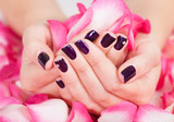 Woman with beautiful nails holding petals - 48875130