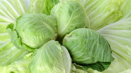 Cabbage. Part 2. Woman takes a cabbage