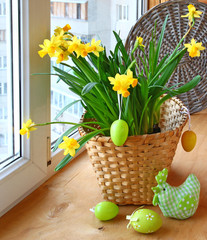 Easter decoration window blooming daffodils and easter eggs