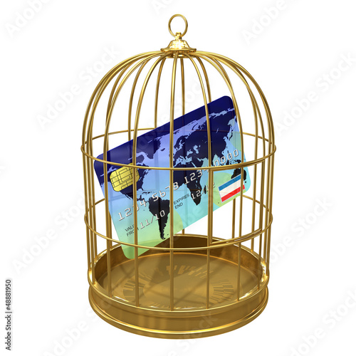 Birdcage with credit card locked inside