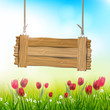 Spring background with tulips and wooden sign