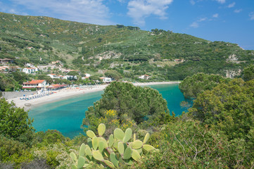 die Bucht und Strand im Urlaubsort Cavoli auf der Insel Elba